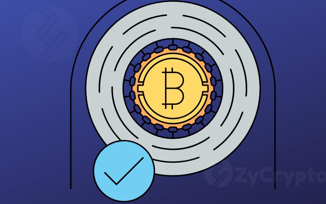 Amidst Gloomy Fall, Bitcoin Still Best Performing Digital Asset In 2019